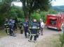 Požar na Kozjanski domačiji