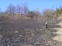 Požar v Jeseniku - travnik 2008